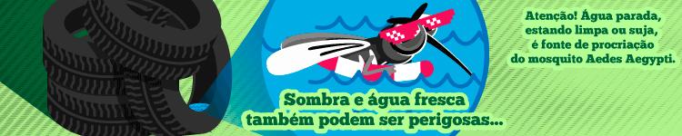 Campanha IFF contra o Mosquito 3