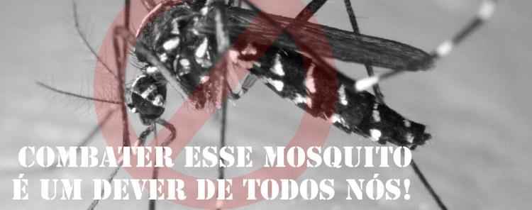 Campanha IFF contra o Mosquito