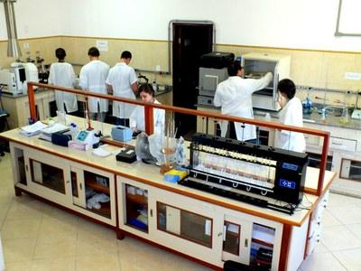 A Upea foi criada com o objetivo de possibilitar o desenvolvimento de atividades de pesquisa e extensão associadas ao sistema do Instituto, principalmente para as áreas de Engenharia Ambiental e Meio Ambiente.