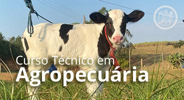 Capa do Curso Técnico em Agropecuária