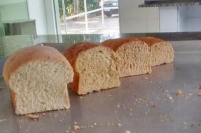 Pães produzidos com farinha de maracujá