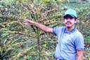 Aluno de Agropecuária aplica técnica aprendida em evento para melhorar qualidade de café