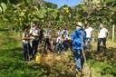 Visita técnica à Fazenda da Uva