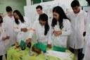 Professores avaliaram os experimentos para eleger os três mais interessantes.