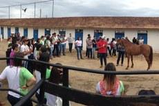 O estudante do campus Hiago Ribeiro ministrou minicurso sobre Manejo Equino.