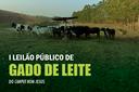 IFF Bom Jesus realizará leilão público de gado de leite no dia 23 de setembro