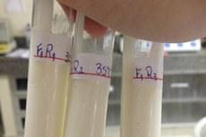 Mais de 20 formulações foram testadas até chegar ao produto final.