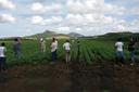 Alunos do Campus Cambuci Realizam Visita Técnica em Fazenda de Macaé