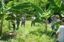 Dia de Campo sobre Fruticultura