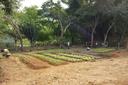 CNPq aprova projeto do Campus Cambuci