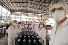Equipe com 11 professores do Curso Técnico em Química trabalha na preparação e separação de álcool líquido e em gel. Fotos: Divulgação