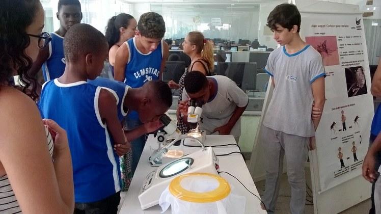Estudantes observam larvas no microscópio