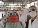 Doação de álcool 70% líquido é separada em laboratório do IFF