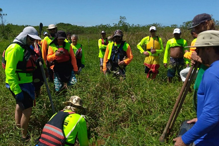 Projeto Capivara realiza replantio de árvores no Bosque São Domingos