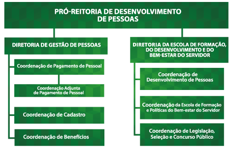 Estrutura Organizacional Prodep