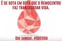 IFF realiza uma nova campanha de doação de sangue