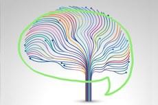 Primeiro contato com os psicólogos será realizado por e-mail
