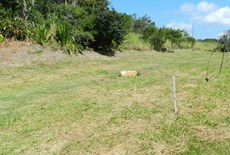 A área que será recuperada tem três mil metros quadrados