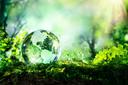 Servidores podem se inscrever para Núcleo de Sustentabilidade